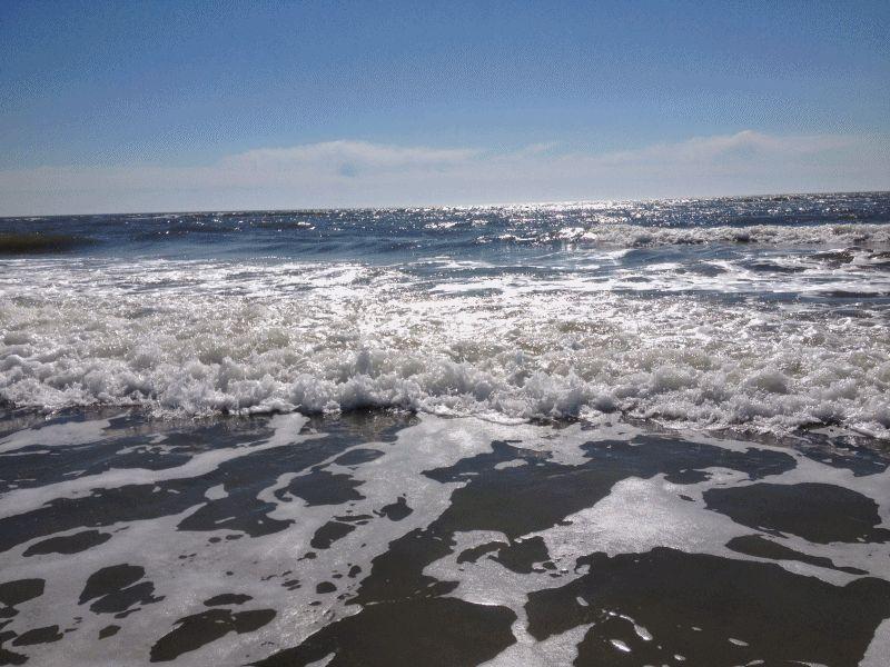 Ocean waves Seabrook SC GIF