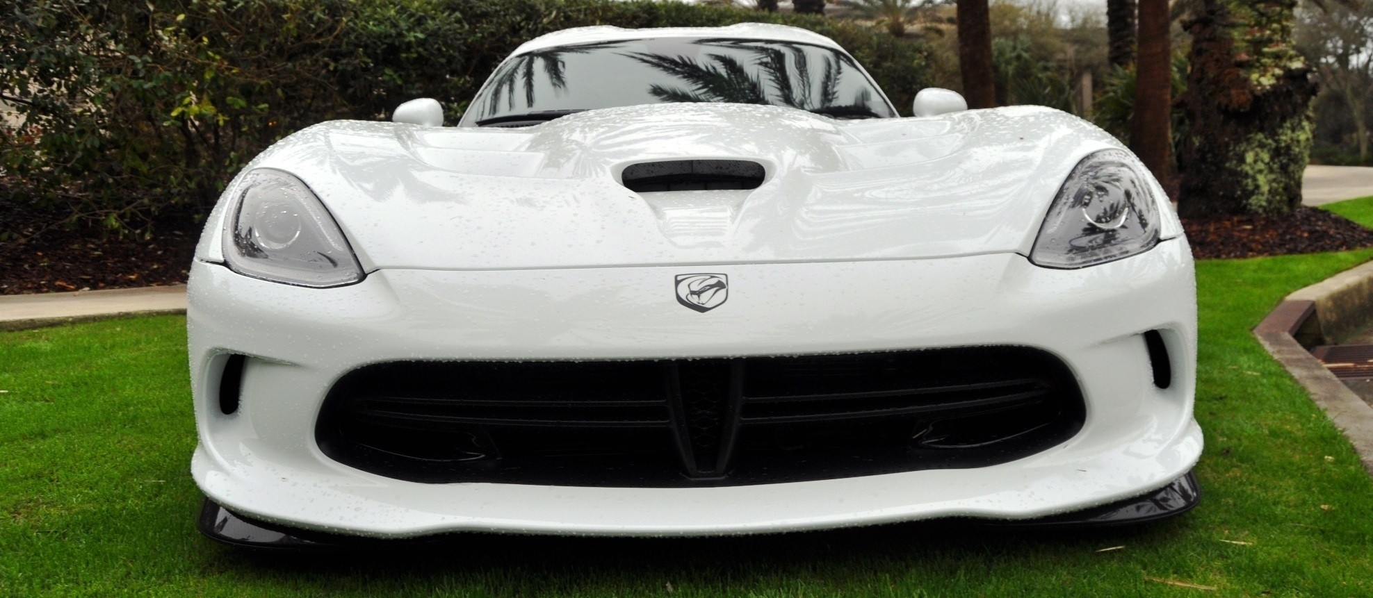 2014 SRT Viper TA in 25 All-New, Real-Life Photos with Carbon Aero Styling Options 23