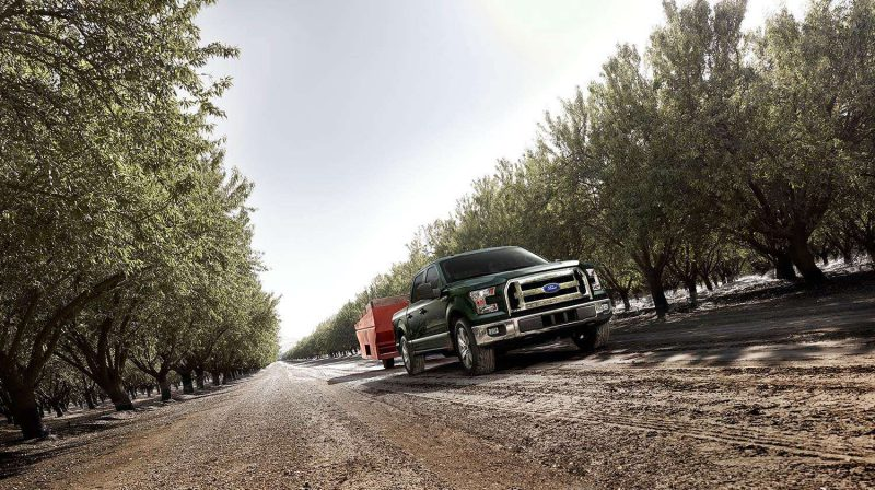 2015 Ford F-150 Platinum Is Disruptively Attractive in Real Life 5