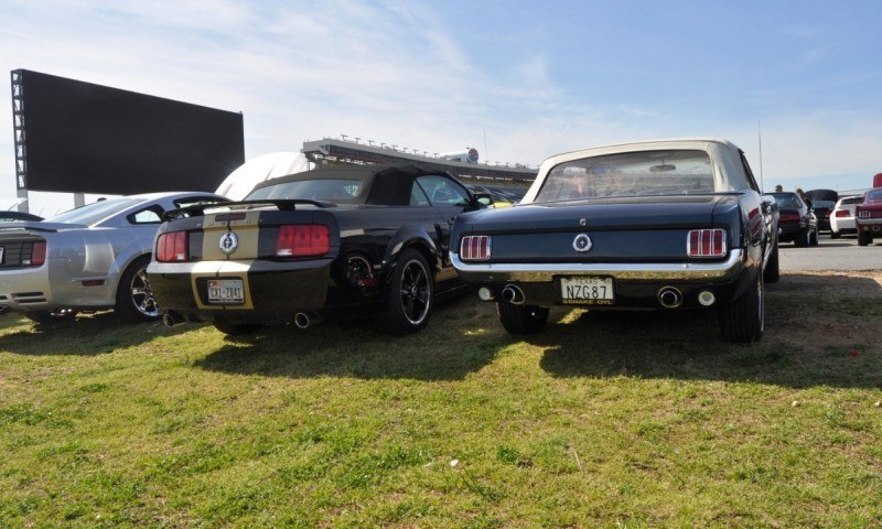 Mustang 50th Anniversary - Stragglers Gallery Shows 150 Great Photos of Your Dream Mustangs 56