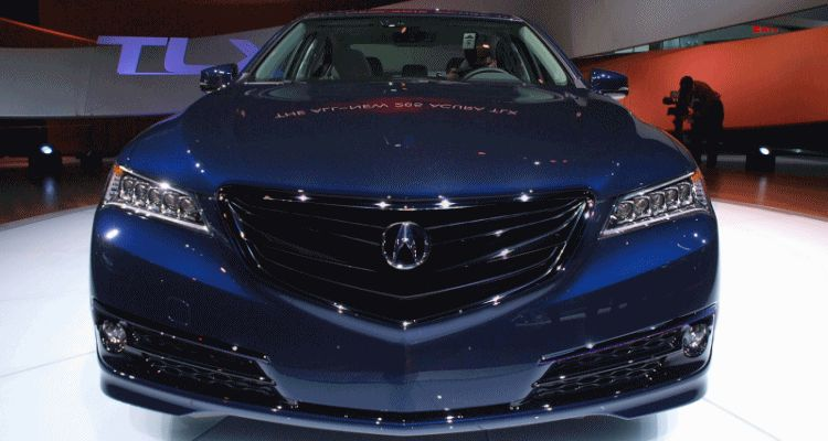 TLX black nose fixed GIF