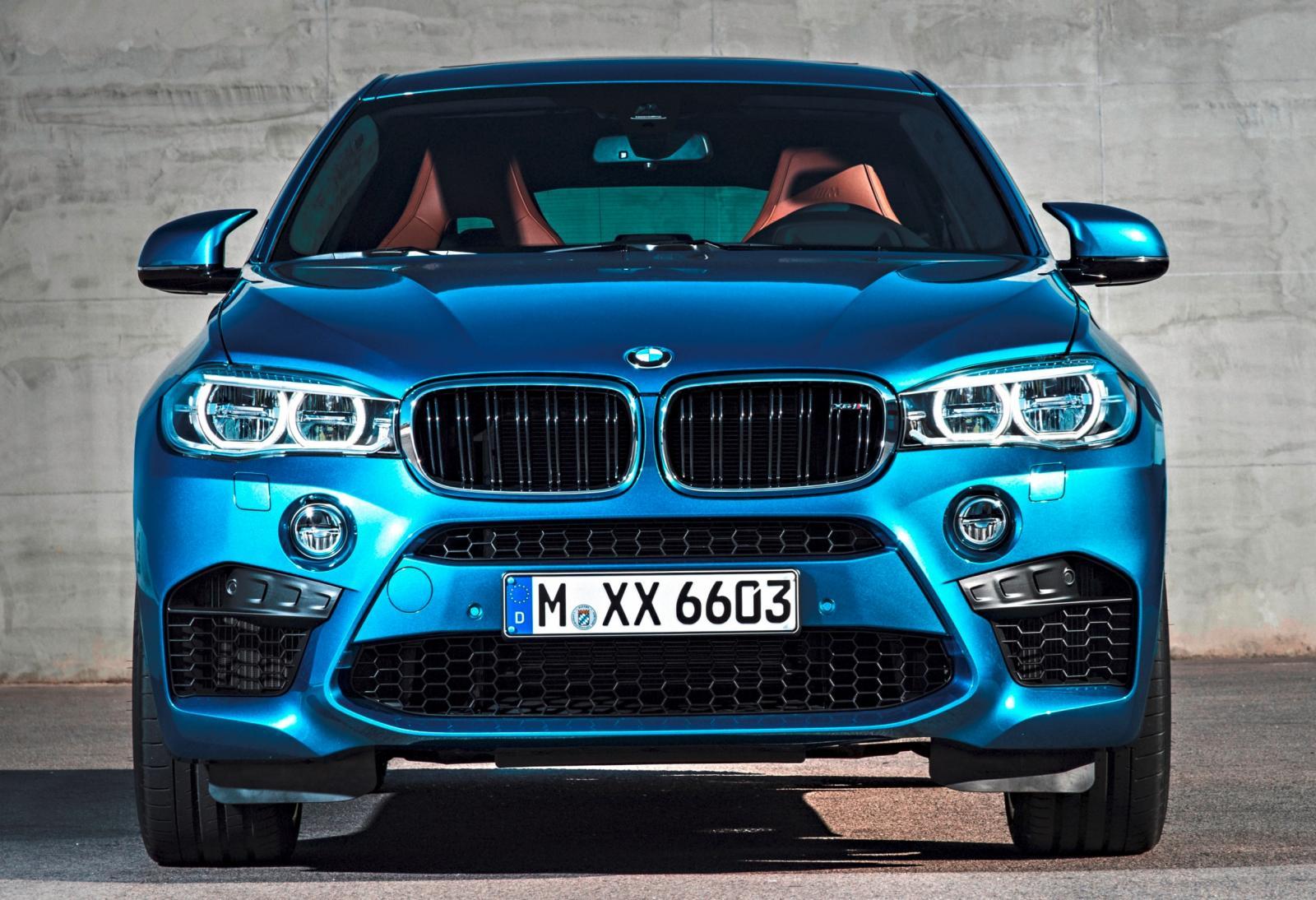 2015 BMW  X6 M 23