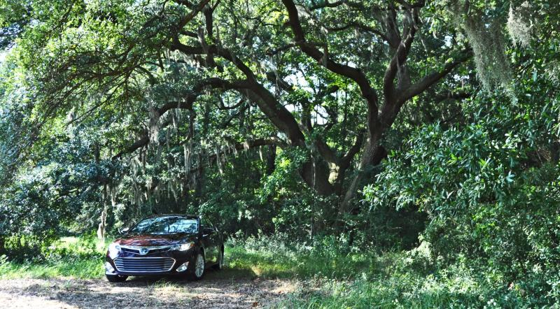 Road Test Review - 2015 Toyota Avalon Hybrid 18