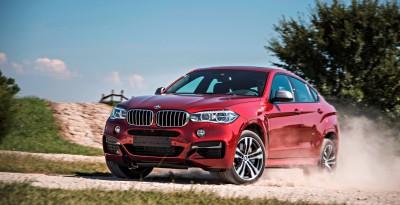 2015 BMW X6 272
