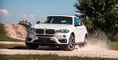 2015 BMW X6 273