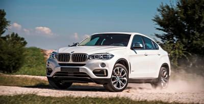 2015 BMW X6 274