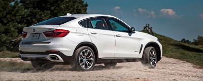2015 BMW X6  278