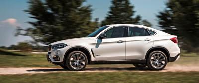 2015 BMW X6 287