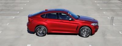 2015 BMW X6 91