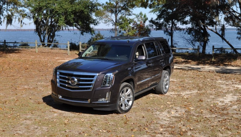 2015 Cadillac Escalade Luxury AWD 18