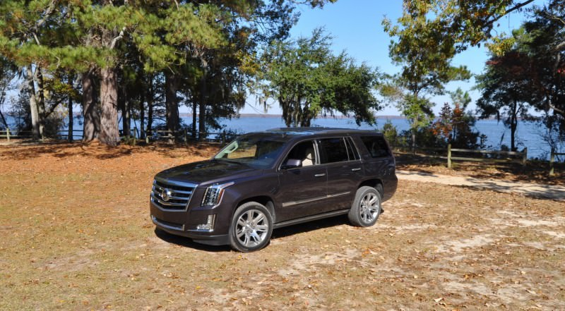 2015 Cadillac Escalade Luxury AWD 19