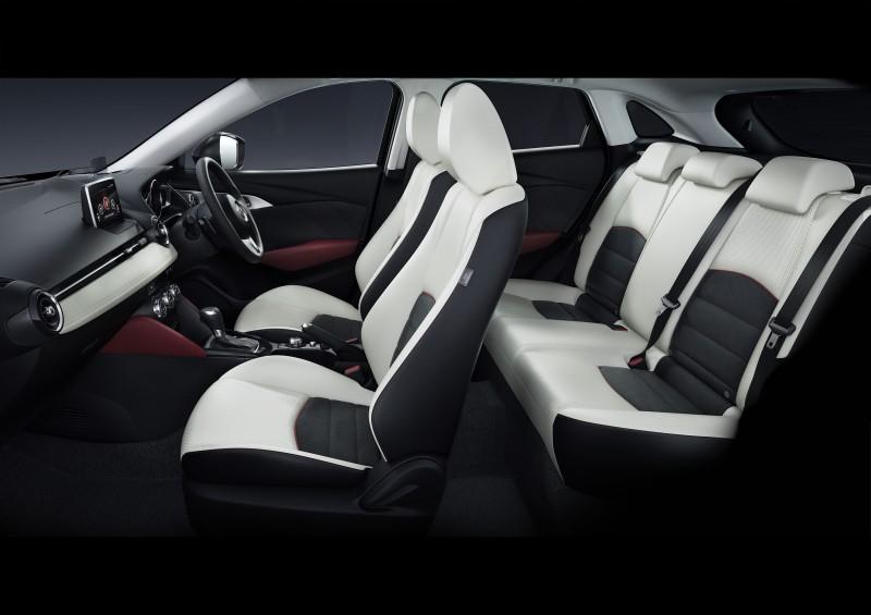 2016 Mazda CX-3 24