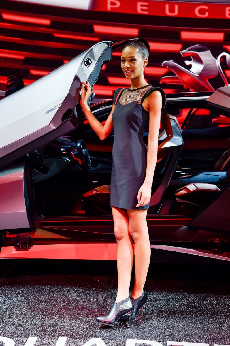 Paris 2014 - The Motor Show Girls 10