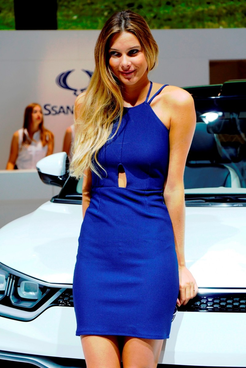 Paris 2014 - The Motor Show Girls 12