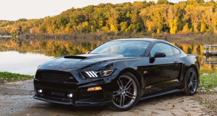 Roush Mustangs gif