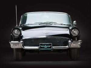 1957 Ford Thunderbird 'F-Code'  16