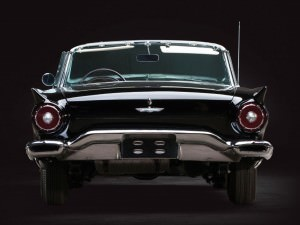 1957 Ford Thunderbird 'F-Code'  17