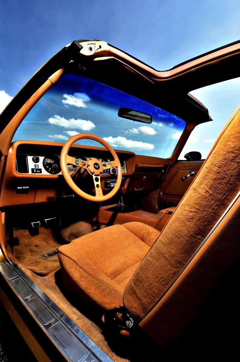 Pontiac Firebird Trans Am Y88 SE Gold Edition 17