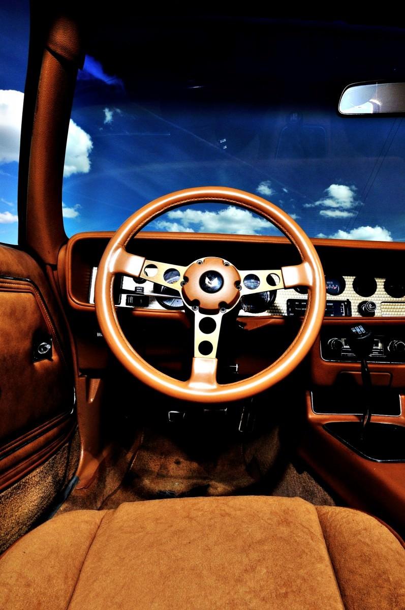 Pontiac Firebird Trans Am Y88 SE Gold Edition 18