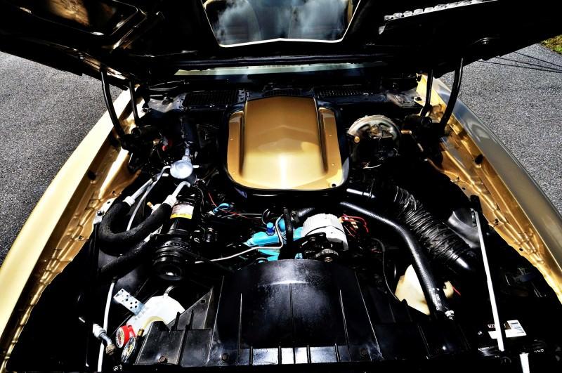 Pontiac Firebird Trans Am Y88 SE Gold Edition 19