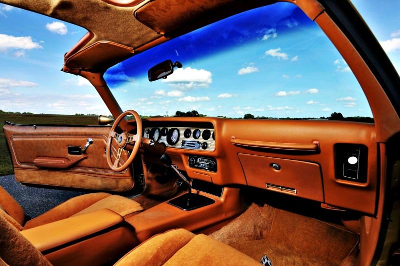 Pontiac Firebird Trans Am Y88 SE Gold Edition 5