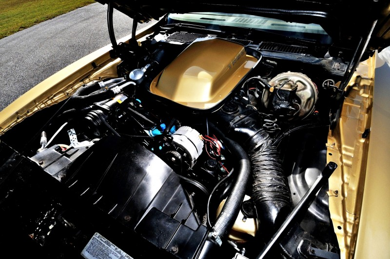 Pontiac Firebird Trans Am Y88 SE Gold Edition 6