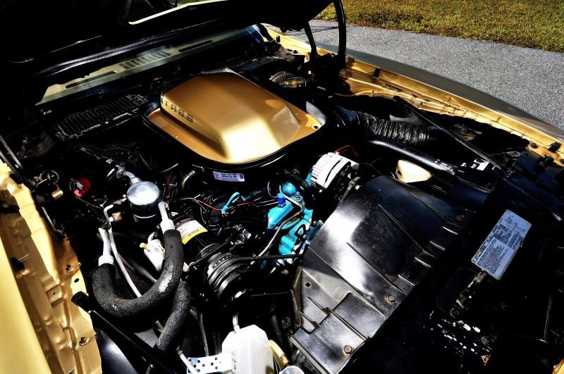 Pontiac Firebird Trans Am Y88 SE Gold Edition 7