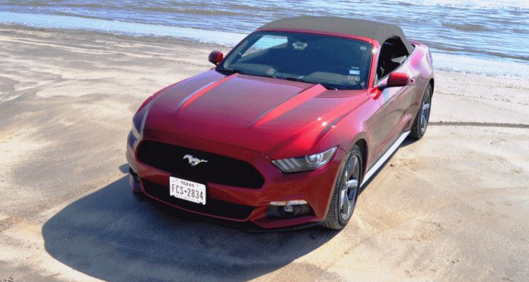 2015 Ford Mustang Convertible Sweeps Muscle Beach! MEGA 140-Photo Gallery