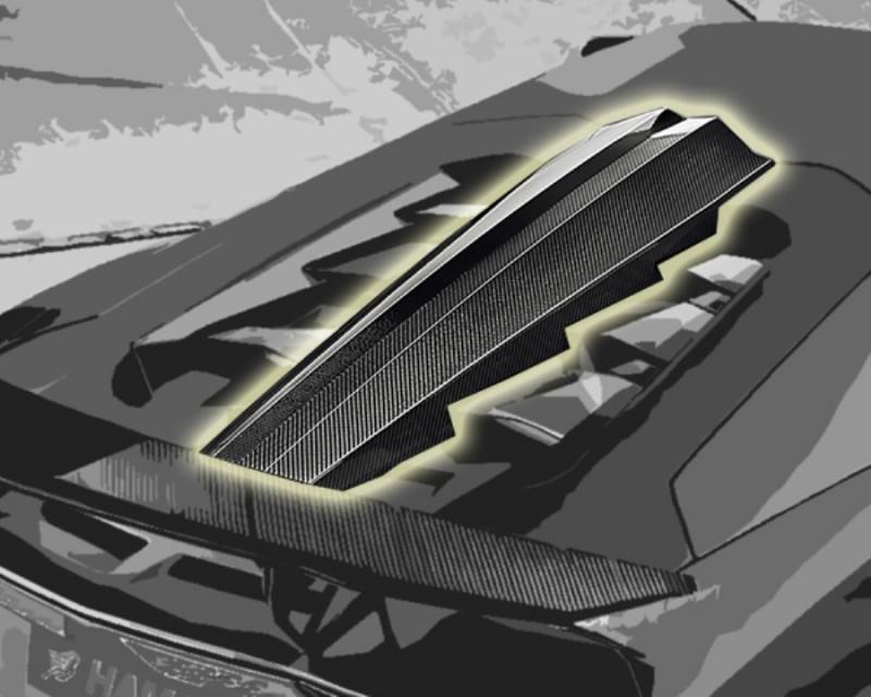 HAMANN Aventador Limited 12