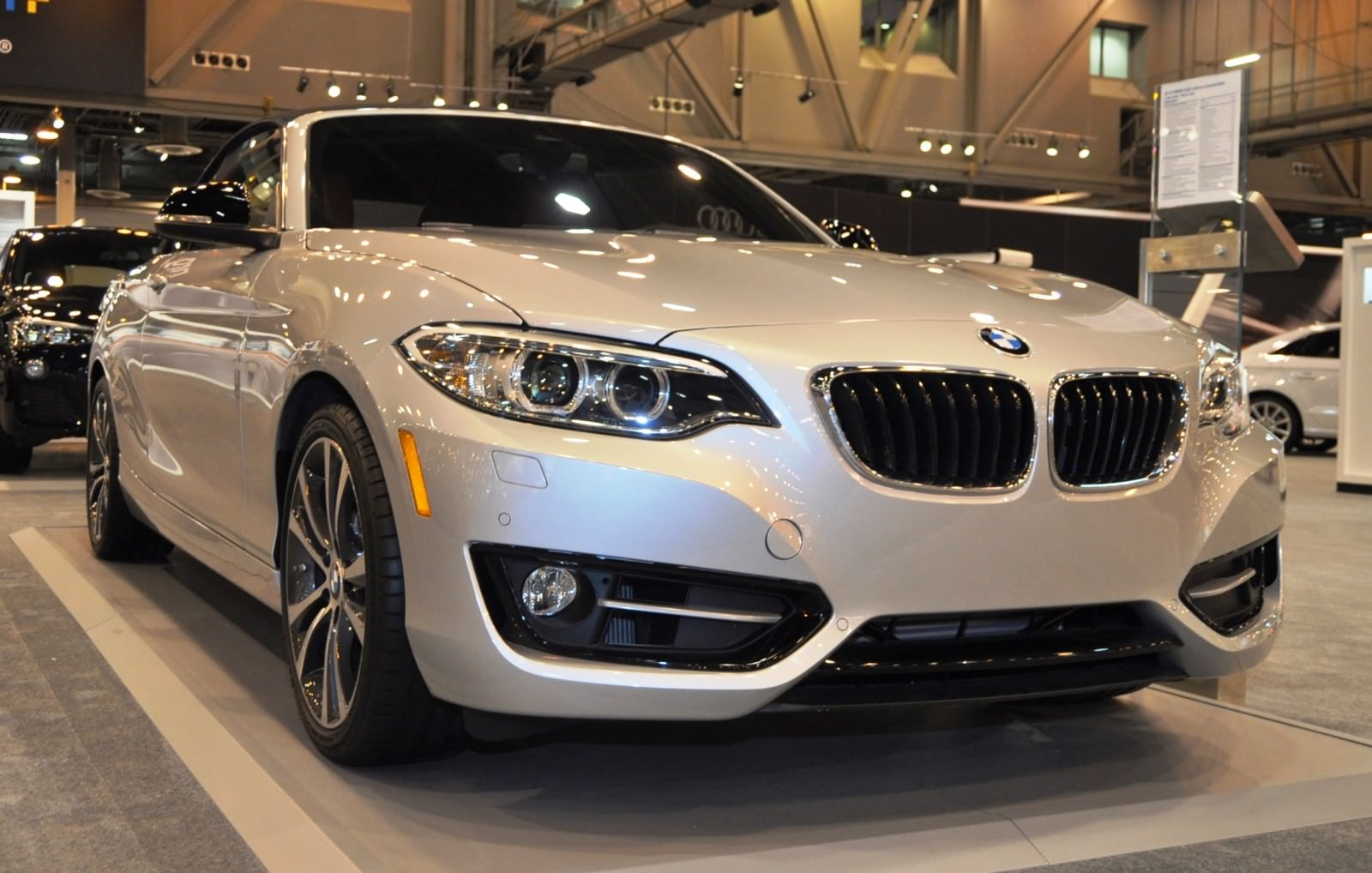 Houston Auto Show - 2015 BMW 228i xDrive Convertible in Luxury Trim 1