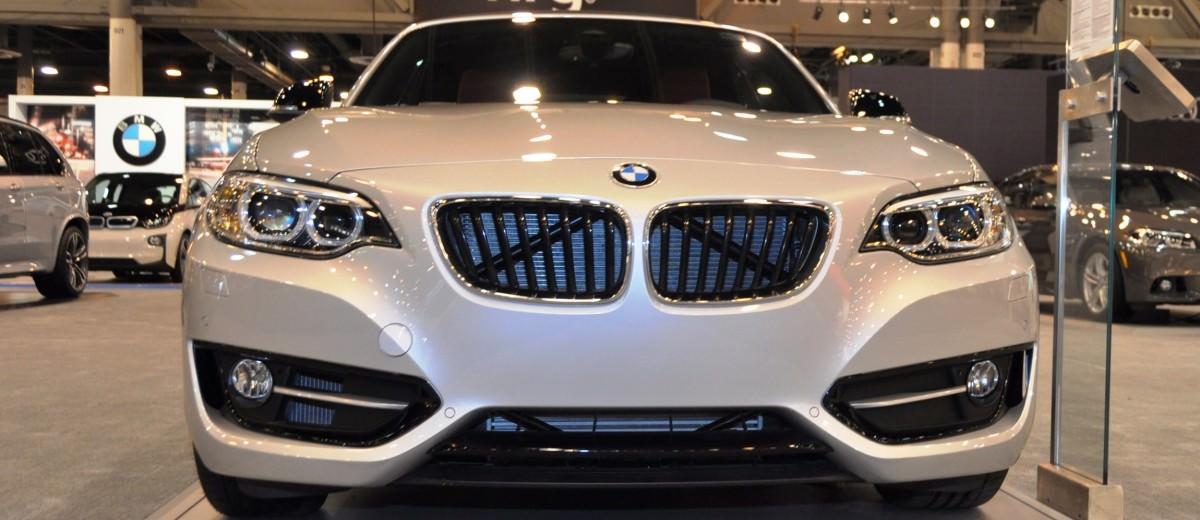 Houston Auto Show - 2015 BMW 228i xDrive Convertible in Luxury Trim 5
