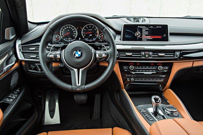 2015 BMW X6 M 101