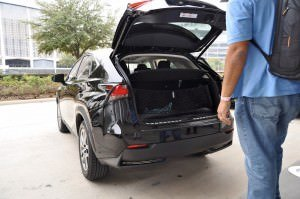2015 Lexus NX300h 21