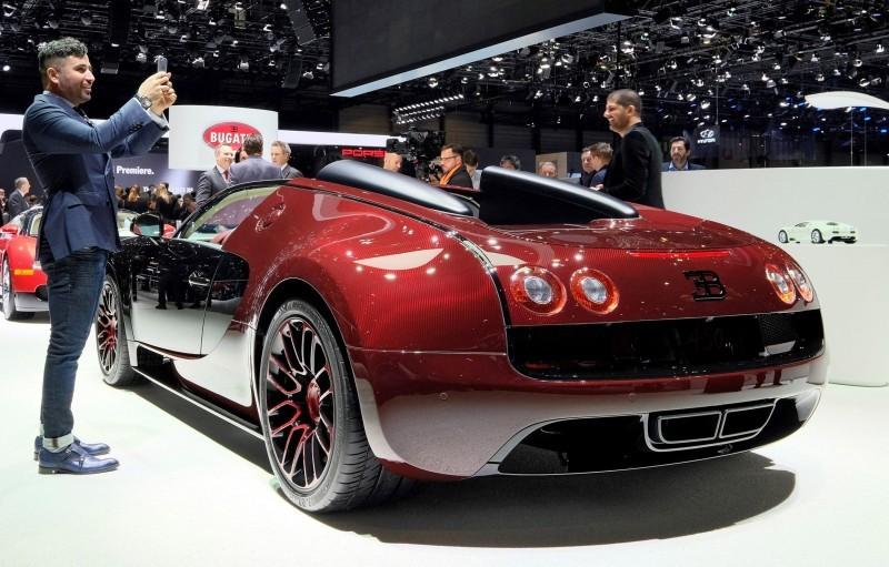 2015 Bugatti VEYRON FINALE 14