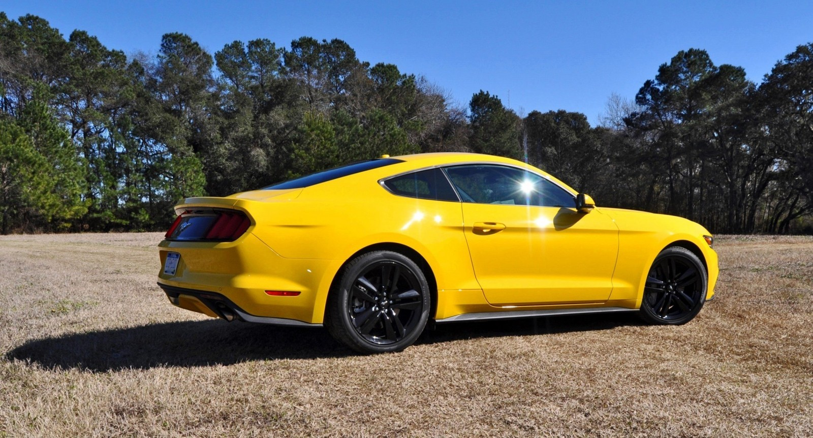2015 Ford Mustang EcoBoost in Triple Yellow 101