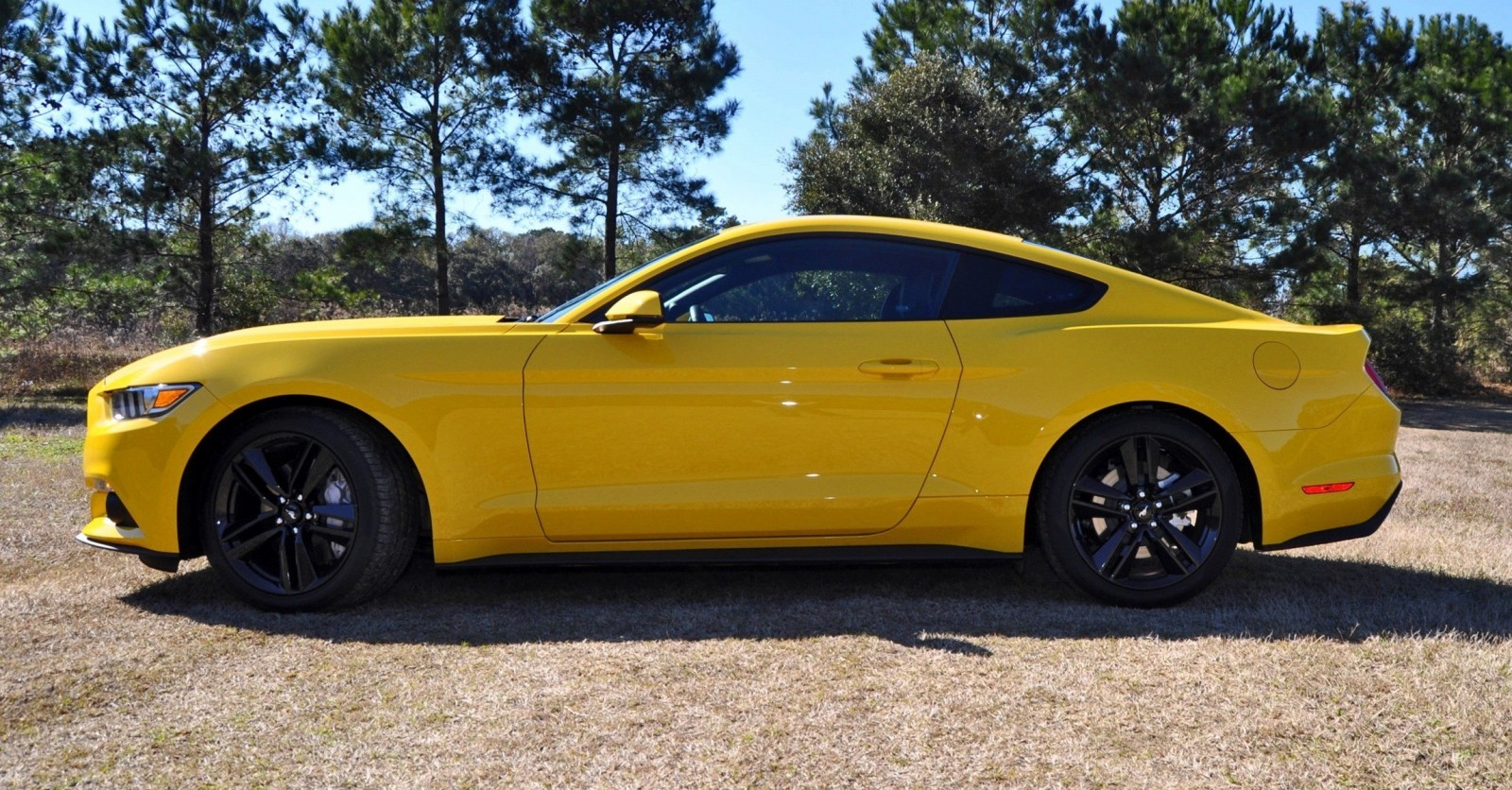 2015 Ford Mustang EcoBoost in Triple Yellow 116