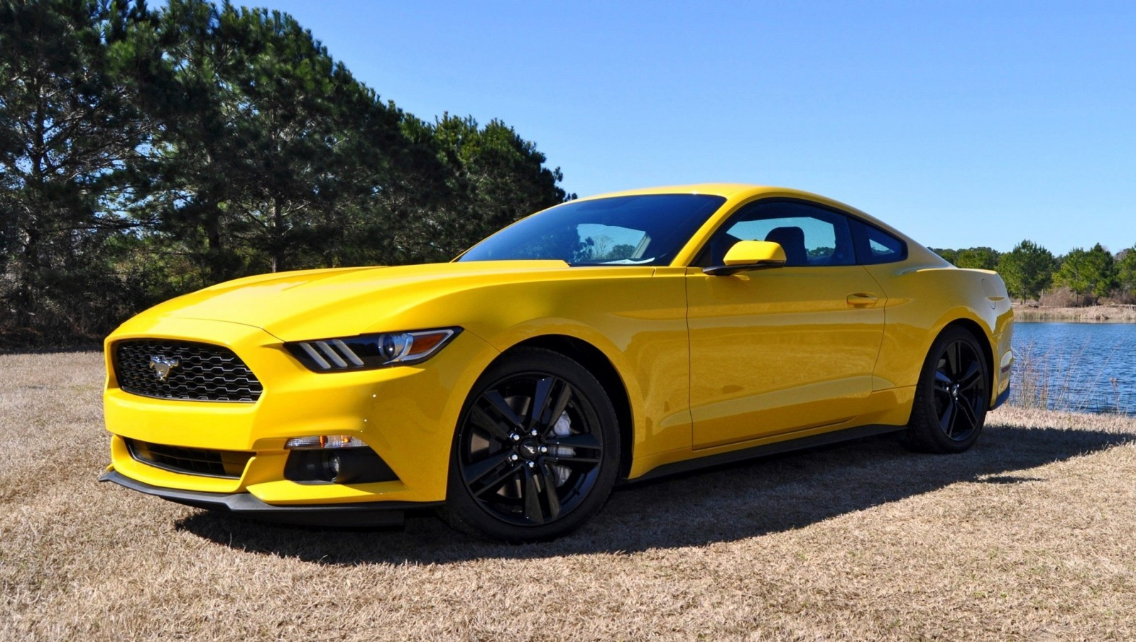 2015 Ford Mustang EcoBoost in Triple Yellow 120