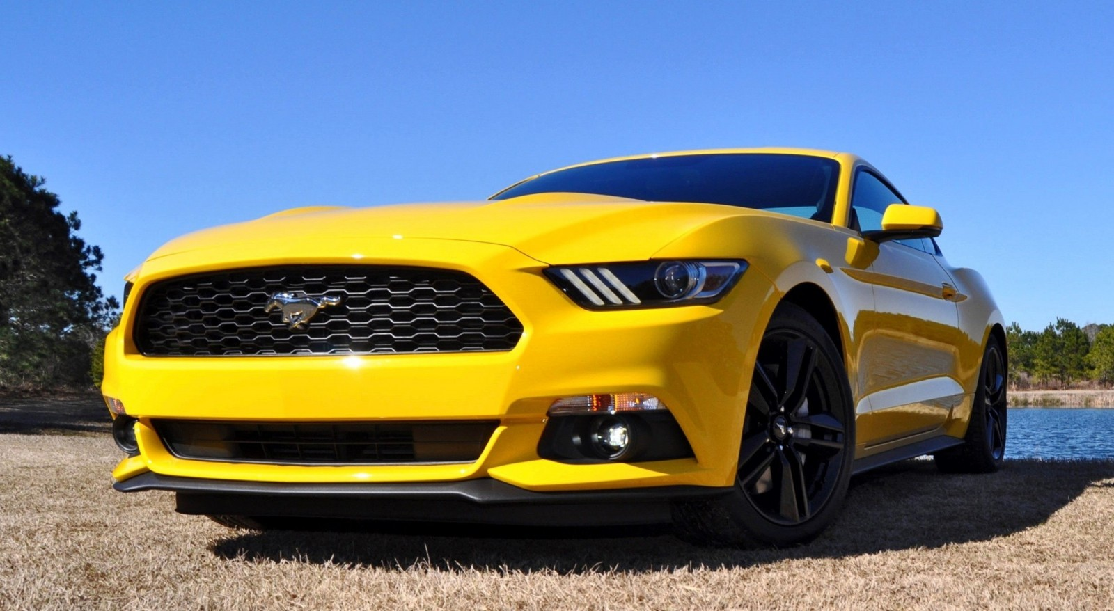 2015 Ford Mustang EcoBoost in Triple Yellow 122