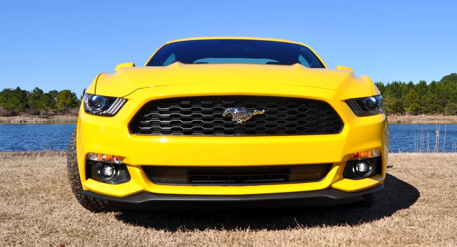 2015 Ford Mustang EcoBoost in Triple Yellow 126
