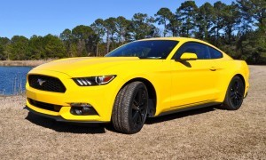 2015 Ford Mustang EcoBoost in Triple Yellow 13