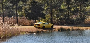 2015 Ford Mustang EcoBoost in Triple Yellow 131