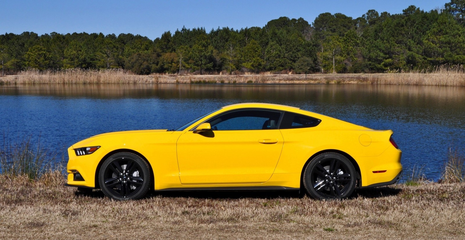 2015 Ford Mustang EcoBoost in Triple Yellow 136