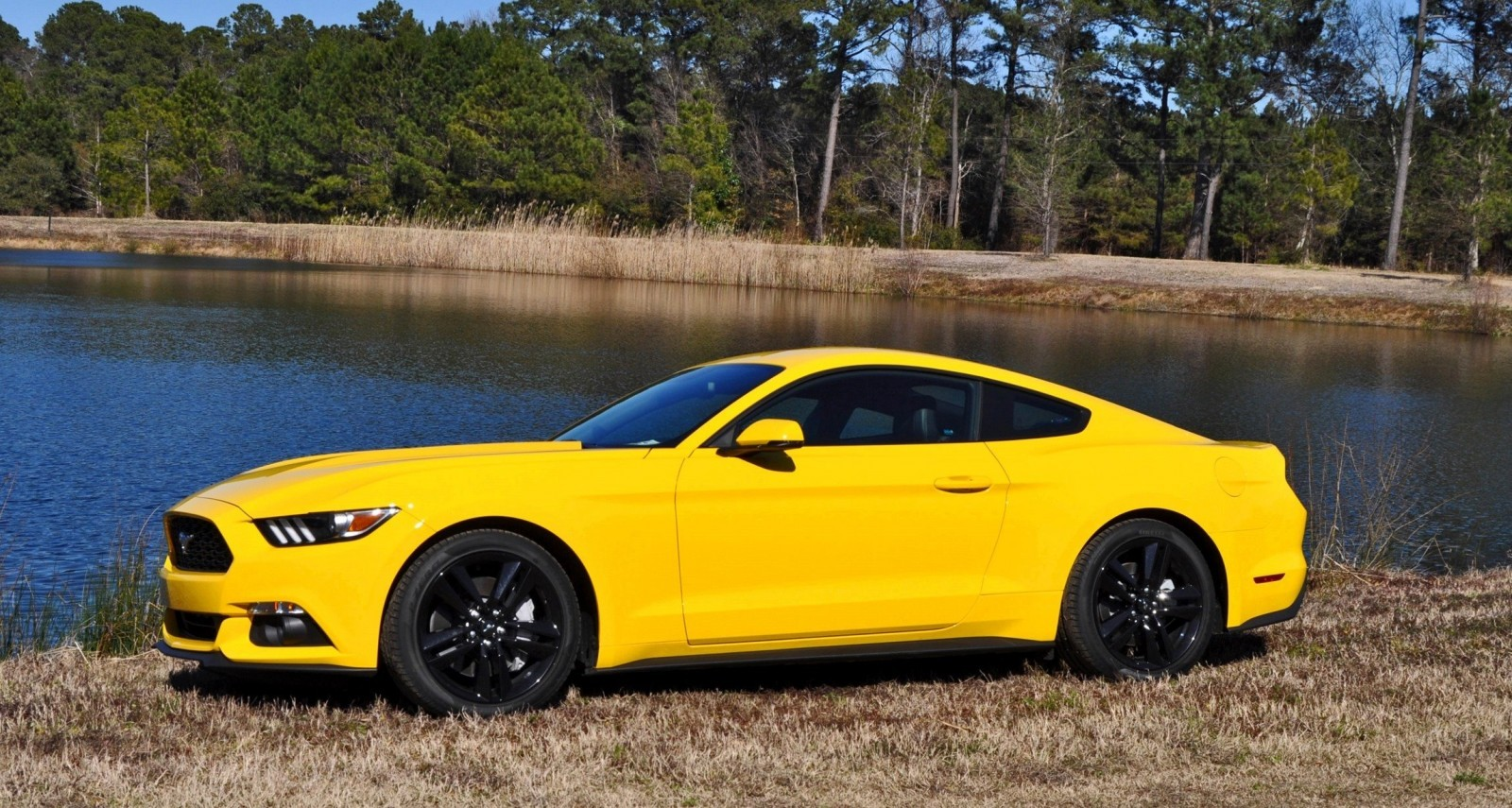 2015 Ford Mustang EcoBoost in Triple Yellow 137