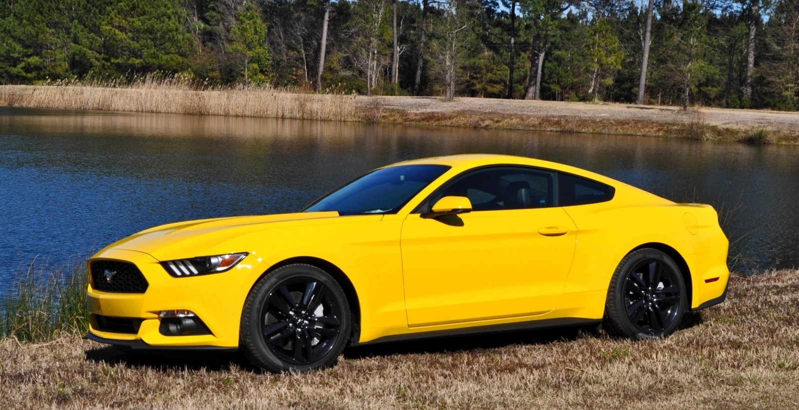 2015 ford mustang ecoboost in triple yellow 139. Black Bedroom Furniture Sets. Home Design Ideas