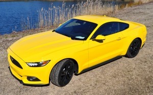 2015 Ford Mustang EcoBoost in Triple Yellow 50