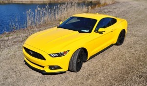 2015 Ford Mustang EcoBoost in Triple Yellow 52