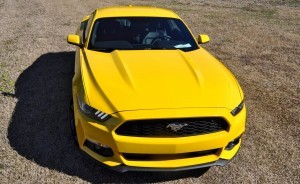 2015 Ford Mustang EcoBoost in Triple Yellow 61