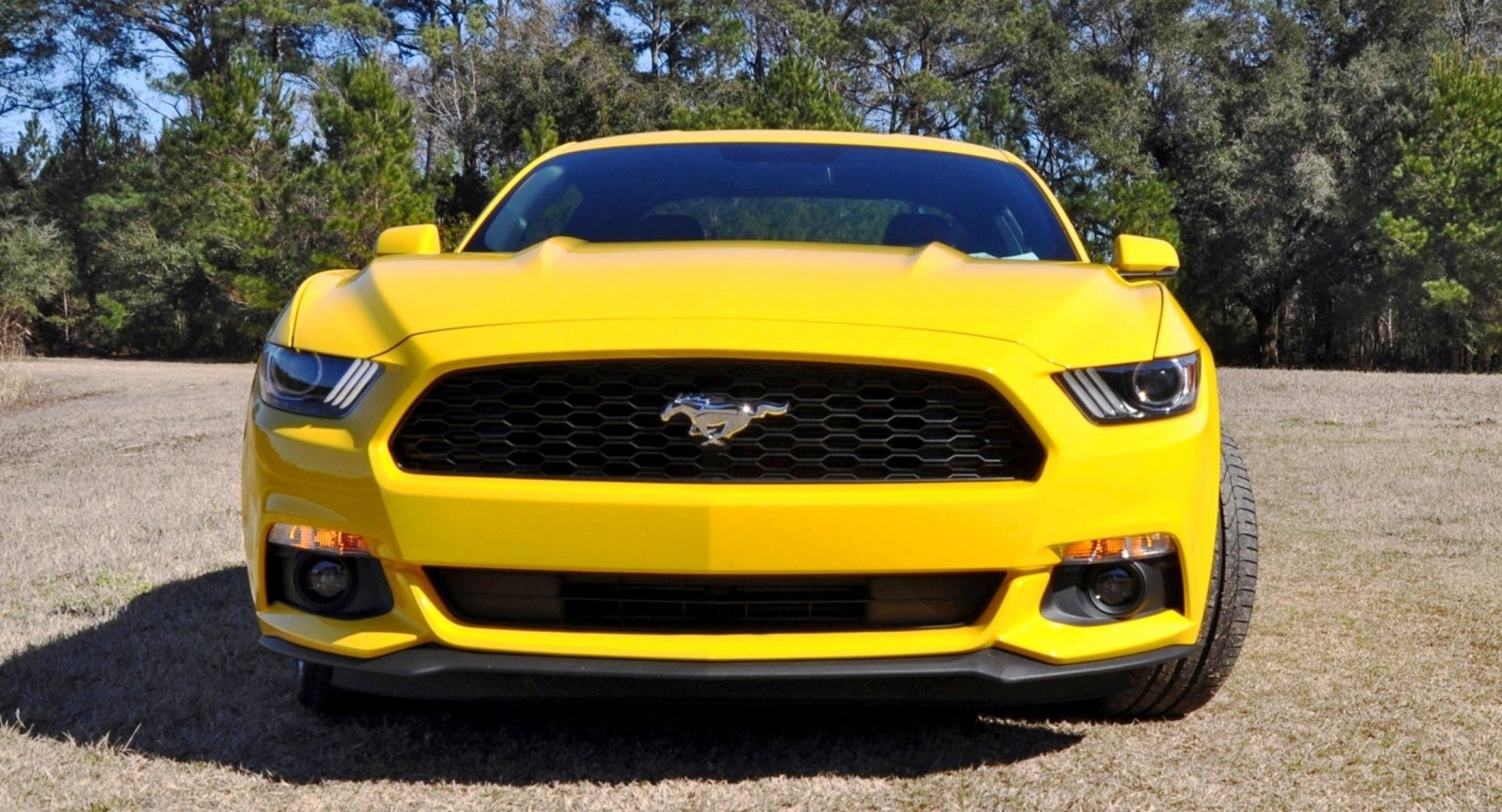 2015 Ford Mustang EcoBoost in Triple Yellow 7