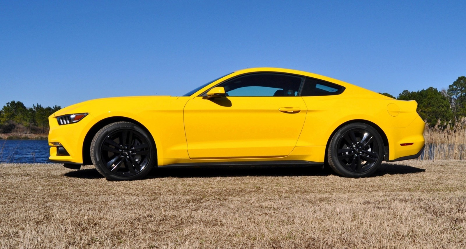 2015 ford mustang ecoboost in triple yellow 14 car revs. Black Bedroom Furniture Sets. Home Design Ideas