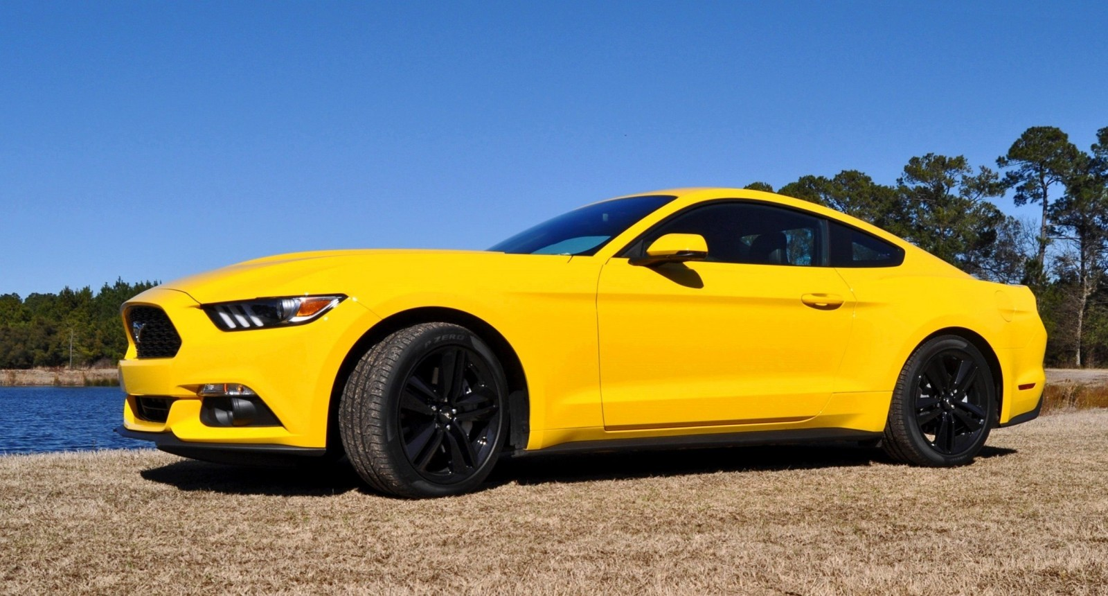 2015 Ford Mustang EcoBoost in Triple Yellow 76